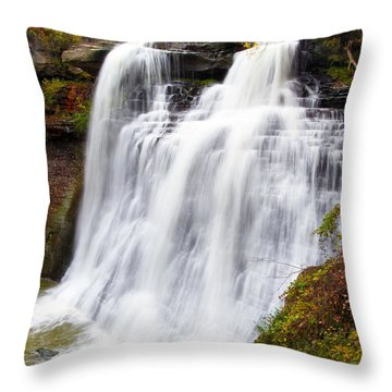 Brandywine Falls Throw Pillow by David Yunker