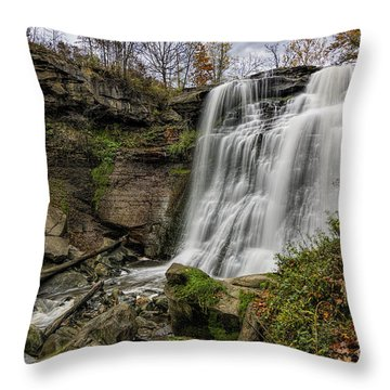 Brandywine Falls Throw Pillow by James Dean