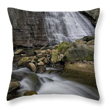 Brandywine Flow Throw Pillow by James Dean