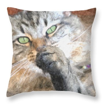 Brazen Throw Pillow by Shari Nees