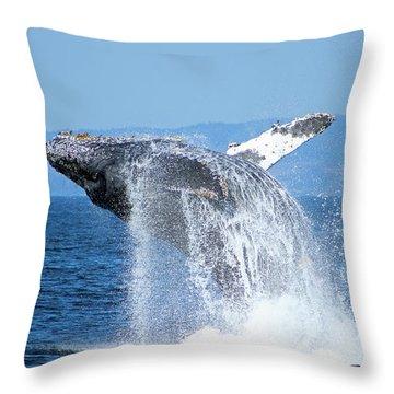 Breaching Humpback Throw Pillow