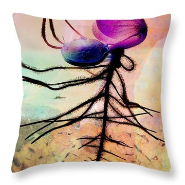 Break Forth Into Joy Throw Pillow by Shirley Sirois