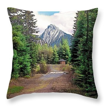 Break In The Weather Throw Pillow by Terry Reynoldson