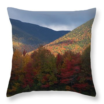 Throw Pillow featuring the photograph Break by Mim White