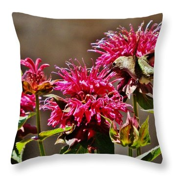 Throw Pillow featuring the photograph Breakfast At The Bee Balm by VLee Watson