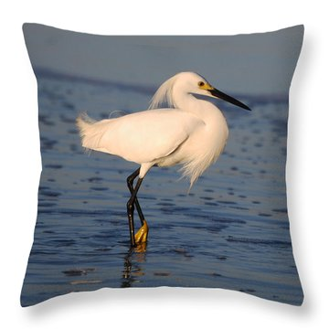 Breakfast Companion Throw Pillow