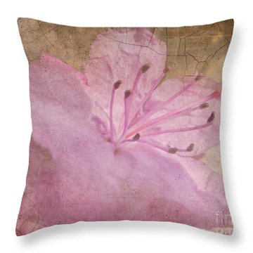 Breaking Through Throw Pillow by Arlene Carmel