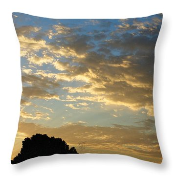 Breaking Through Throw Pillow by Glenn McCarthy Art and Photography
