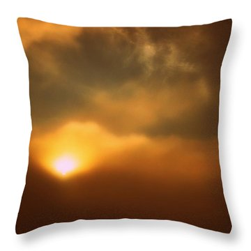 Breaking Through Throw Pillow by Shirley Sirois