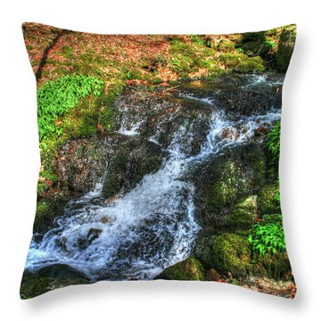 Throw Pillow featuring the photograph Breath Deeply by Doc Braham