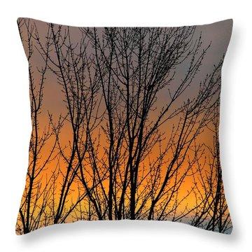 Breezeful Throw Pillow