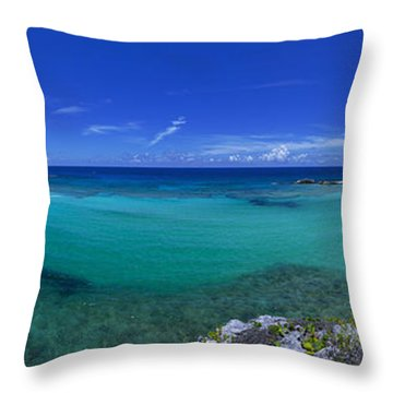 Breezy View Throw Pillow