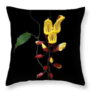 Brick And Butter Vine Throw Pillow