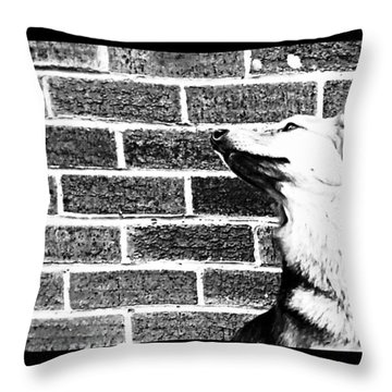 Brick By Brick Throw Pillow