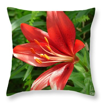 Brick Red  Throw Pillow by Lew Davis