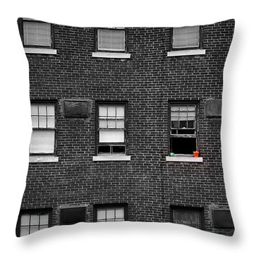 Brick Wall And Windows Throw Pillow