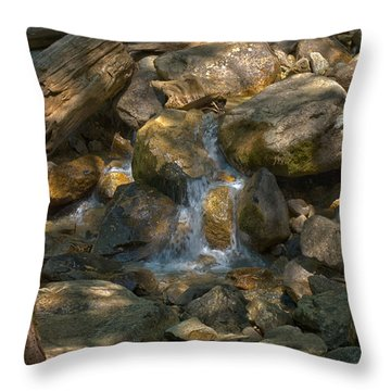 Bridalveil Creek I Throw Pillow