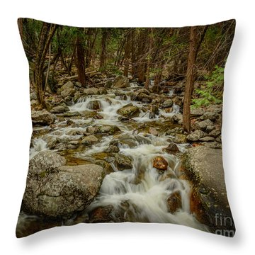 Bridalveil Creek In Yosemite Throw Pillow
