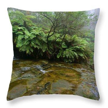 Bridge In The Mist Throw Pillow