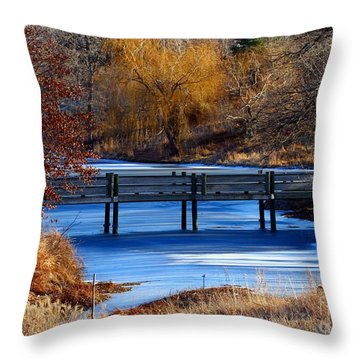 Throw Pillow featuring the photograph Bridge Over Icy Waters by Elizabeth Winter