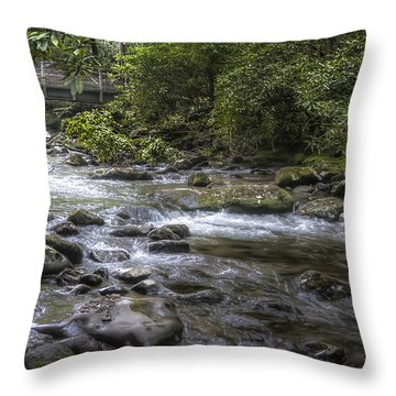 Bridge Over Running Water Throw Pillow