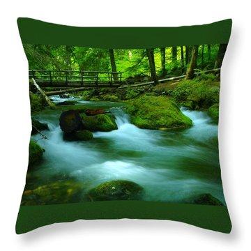Bridge Over The Tananamawas Throw Pillow by Jeff Swan