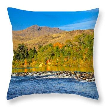 Bridge View Throw Pillow by Robert Bales