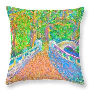 Ritter Park Throw Pillows