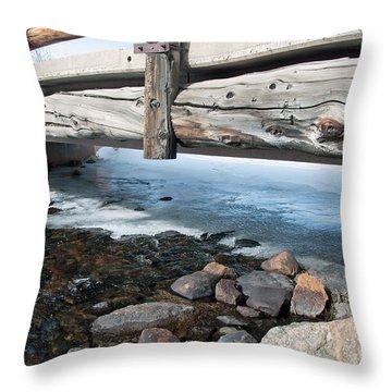Bridges Throw Pillow by Minnie Lippiatt
