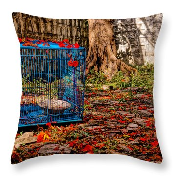 Brid's Cage Throw Pillow by Utkarsh Solanki