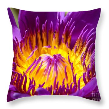 Bright And Bold Throw Pillow by Sabrina L Ryan