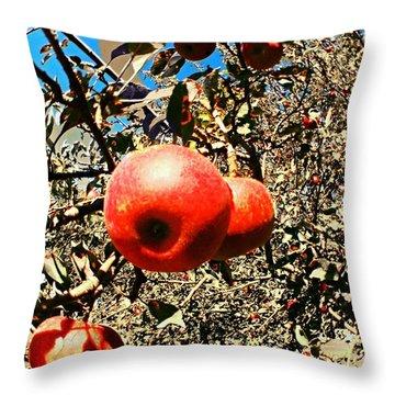 Bright Apples Throw Pillow by Garren Zanker
