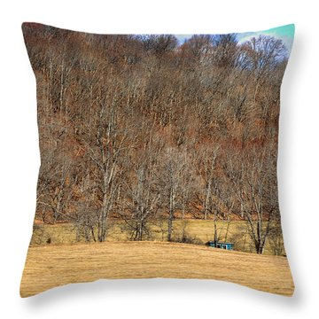 Bright Blue Shed Throw Pillow by Paulette B Wright