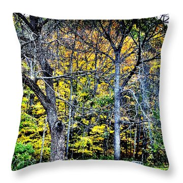 Bright Darkness Throw Pillow
