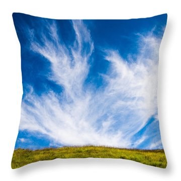 Bright Green Meadow And Deep Blue Sky Throw Pillow by Matthias Hauser