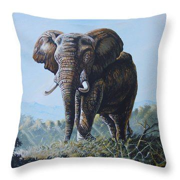 Bright Morning Throw Pillow by Anthony Mwangi