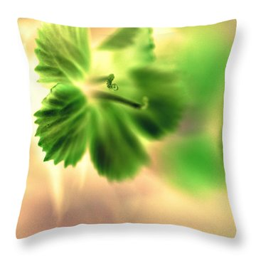 Bright One Throw Pillow by Christine Ricker Brandt
