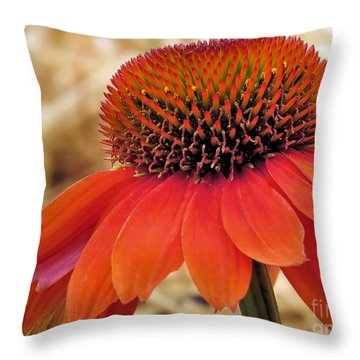 Bright Orange Coneflower Throw Pillow by Janice Drew