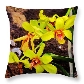 Bright Orchids Throw Pillow by Craig Wood