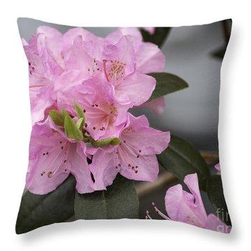 Bright Pink Azalea Throw Pillow by Arlene Carmel