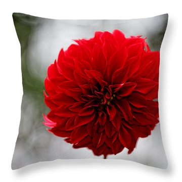 Bright Red Dahlia Throw Pillow