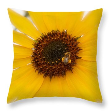 Throw Pillow featuring the photograph Vibrant Bright Yellow Sunflower With Honey Bee  by Jerry Cowart