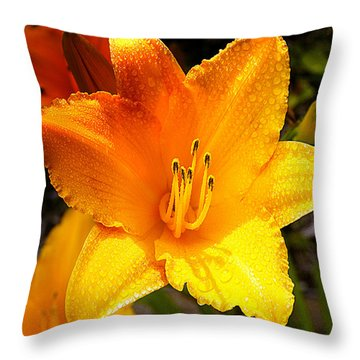 Bright Yellow Daylily Flower Throw Pillow