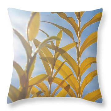 Throw Pillow featuring the photograph Brightness by The Art Of Marilyn Ridoutt-Greene