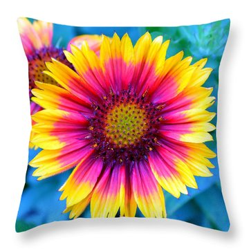 Throw Pillow featuring the photograph Brilliance by Deena Stoddard