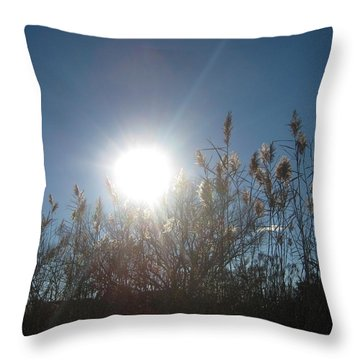 Brilliance In The Grasses Throw Pillow
