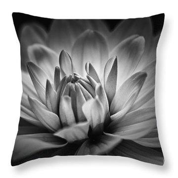 Brilliance Throw Pillow