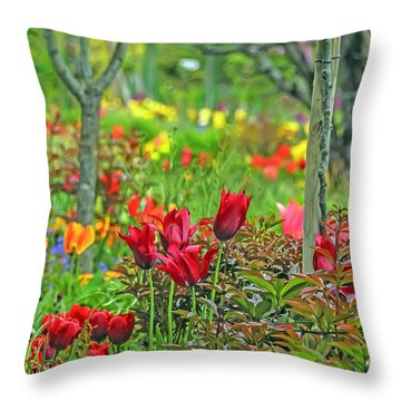 Brilliance Of Burgundy Throw Pillow