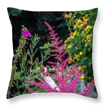 Brilliant Astilbe In Markree Castle Gardens Throw Pillow