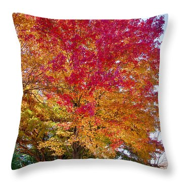 brilliant autumn colors on a Marblehead street Throw Pillow by Jeff Folger